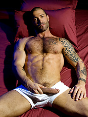 Tattoed star Junior Stellano showing his hard dick