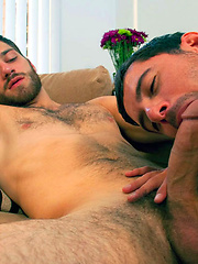 Two sexy hairy dudes sucking and fucking