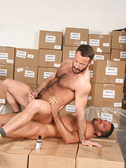 Perfectly bearded and furred stud Damien lubes up his tool and fucks Wilfried Knight